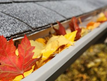 What Your Gutters Need This Fall